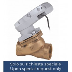 """Threaded """"non stick"""" valve with electric actuator"""